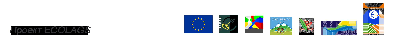 Проект Ecolags Logo